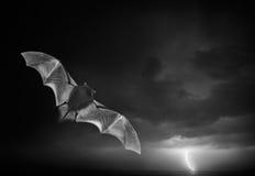 Bad i burza Zdjęcie Royalty Free