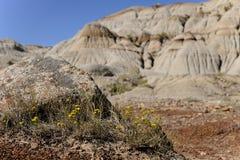 Bad-lands Boulder Photo stock