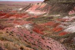 Bad-lands peints de désert Photographie stock