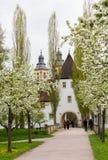 Bad Mergentheim in Germania Immagini Stock Libere da Diritti