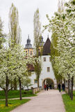 Bad Mergentheim i Tyskland Royaltyfria Bilder