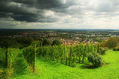 Bad Nauheim. Small city in west Germany. The vineyard on the hill.2011 Stock Images