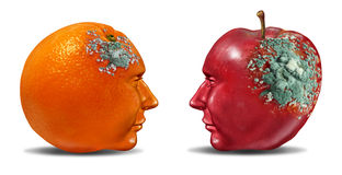Bad Partnership. And mind control with an apple and an orange shaped as a human head with rotting mold as a business symbol of a brain or infection that is royalty free illustration