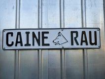Bad pies - Caine rau Zdjęcie Royalty Free