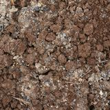 Bad quality earth soil Stock Photography