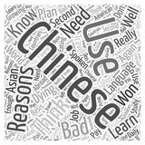 Bad reasons not to learn chinese word cloud concept vector background Royalty Free Stock Photos