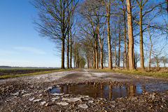 Bad road conditions Royalty Free Stock Photo