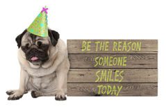 Bad tempered pug puppy dog with wooden sign with text be the reason someone smiles today. Isolated on white background Stock Photo