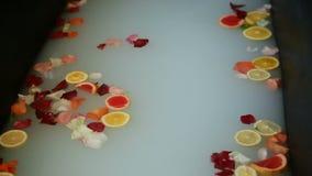 Bad van de close-up nam het hete schoonheid met melk, citrusvruchtenplakken, en bloemblaadjes toe stock video