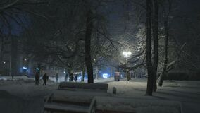 Bad weather in the city. Group of people goes under snow-covered trees, one person pulls a branch and the snow falls on the crowd. Snowfall in the city at night stock footage