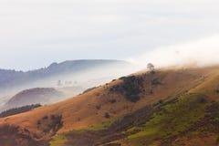 Bad weather fogs on Otago peninsula landscape, NZ. Fogs and bad weather over Otago peninsula landscape scenery, South Island near Dunedin, New Zealand Stock Image