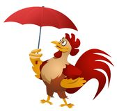 Bad weather. Funny red rooster with umbrella. Royalty Free Stock Photography