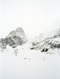 Bad weather in mountains: a snow storm and a fog. Stock Image