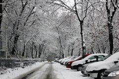 Bad winter weather Royalty Free Stock Images