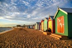 Bada askar på Brighton Beach, Melbourne Arkivbild