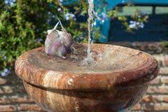 Bada i springbrunnen Fotografering för Bildbyråer