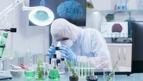 Badacz jest ubranym białych coveralls pracuje na komputerze w nowożytnym laboratorium zbiory