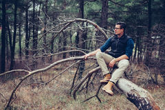 Badacza mężczyzna odpoczywa na drzewie Fotografia Royalty Free