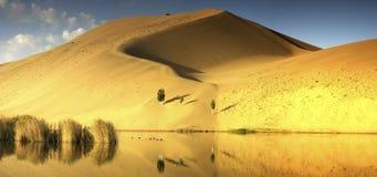 Badain Jaran沙漠 免版税库存照片