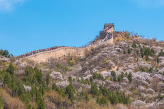 Badaling Great Wall of Beijing in China Royalty Free Stock Images