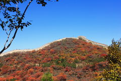 Badaling national forest park Stock Photos