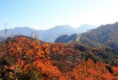 Badaling national forest park Stock Photos
