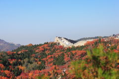 Badaling national forest park Royalty Free Stock Photo