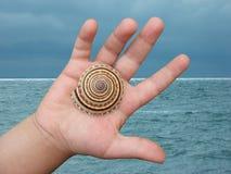 badania na plaży Fotografia Stock