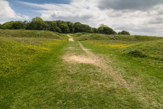 Badbury Rings Iron Age hill fort Royalty Free Stock Photo