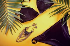Baddräkt för bikinisvartsammet, halsband och tropiska palmblad på gul bakgrund ?ver huvudet sikt av kvinnas swimwear royaltyfri foto