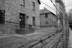 Baddröm i Auschwitz Royaltyfri Fotografi