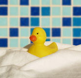 Badeend. Yellow plastic bath duck on a pillow Royalty Free Stock Photo