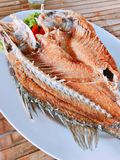 Badejo fritado Foto de Stock Royalty Free