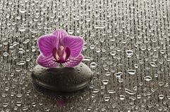Badekurort Stockbilder