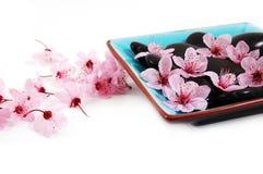 Badekurort-Blüten Lizenzfreies Stockbild