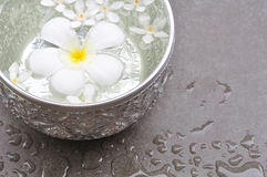 BADEKURORT-Dekoration Lizenzfreies Stockfoto