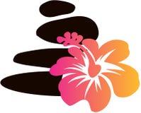 Badekurort-Felsen und Hawian-Blumen-Vektor Stockbild
