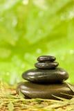 Badekurort-Massage-heiße Steine in der grünen Umgebung lizenzfreies stockfoto