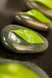 Badekurort-Massage-heiße Steine mit grünen Blättern Lizenzfreies Stockbild