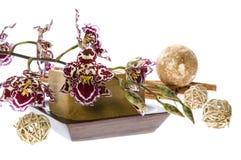 Badekurort. natürliche Seifen und Orchidee Stockfoto