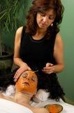 Badekurort-Schönheit Skincare Gesichtsbehandlung Lizenzfreie Stockfotografie