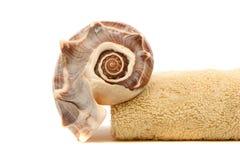 Badekurort Tuch und Seashell stockfoto