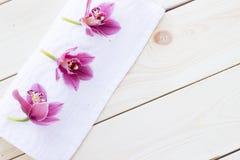 Badekurort und Wellneßeinstellung lizenzfreie stockbilder