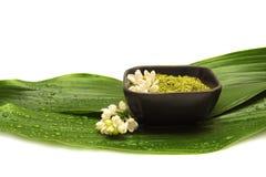 Badekurort xenna, Blume und grünes Blatt Lizenzfreie Stockfotografie