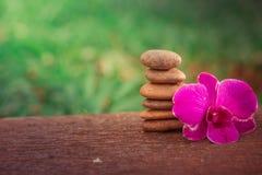 Badekurort Zen Orchids Thailand Stockfotografie