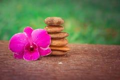 Badekurort Zen Orchids Thailand Lizenzfreies Stockfoto