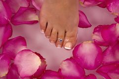 Badekurortbehandlung mit Mineralwasser und den hellen farbigen Flieder-rosafarbenen rosafarbenen Blumenblättern haben Stockfoto