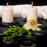 Badekurorteinstellung der Passionsblumenblume, des grünen Niederlassungsfarns und der Kerzen Lizenzfreie Stockfotos