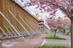 Badekurortgarten und Staffelungshaus Lizenzfreies Stockfoto