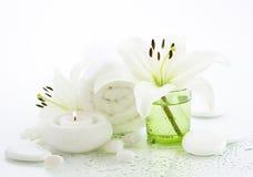 Badekurortkonzept in Grünem und im Weiß Stockfotografie